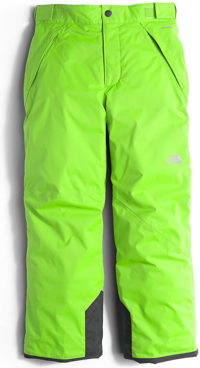71bd846ff The North Face Freedom Insulated Ski Pant - Boys 2017